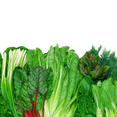 Get the benefits of a highly nutritious diet